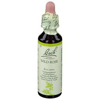 Bach Flower Remedie 37 Wild Rose