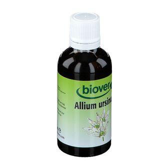 Biover Allium Ursinum