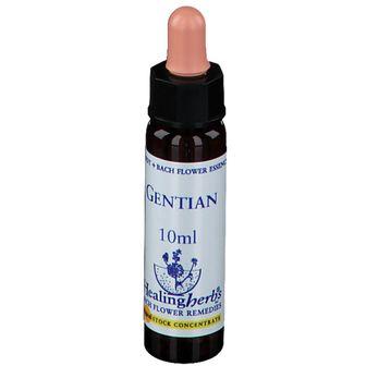 Healing Herbs Gentian