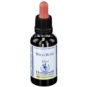 Healing Herbs Wild Rose